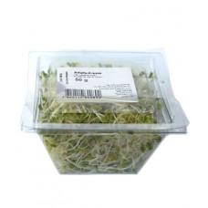 Jeunes pousses alfalfa-cresson, 50g
