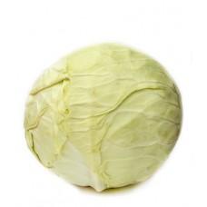 Choux blancs suisses 1kg