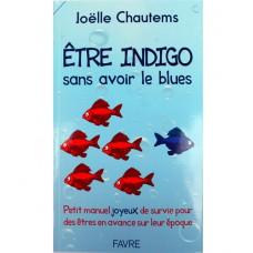 Être Indigo sans avoir le blues Joëlle Chautems (171p)
